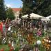 Verschoben auf 2021 - 10. DiGA Gartenmesse Aldersbach 3