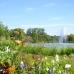 Landesgartenschau Apolda 2