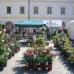 Verschoben auf 2021 - 10. DiGA Gartenmesse Aldersbach 9