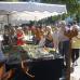 Verschoben auf 2021 - 10. DiGA Gartenmesse Aldersbach 6