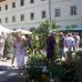 Verschoben auf 2021 - 10. DiGA Gartenmesse Aldersbach 5