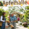 Traditionsfest mit grünem Markt 2017 3