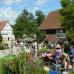 Pflanzenmarkt Wackershofen 1
