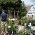 Pflanzenmarkt Wackershofen 4