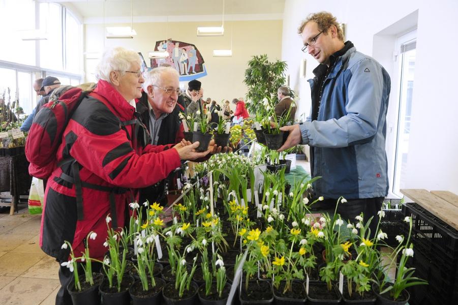 Du Und Dein Garten Spezialmarkt