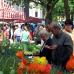 Blumen- und Gartenmarkt Essen Steele 2017 1