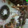 Haus- und Gartenausstellung auf Schloss Hohenstadt 1