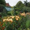 Ippenburger Herbstfestival 6