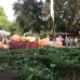 Ippenburger Herbstfestival 5