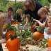 Ippenburger Herbstfestival 4