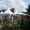 Ippenburger Sommerfestival 1