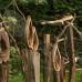 Verschoben auf 19./20.9.20 - GartenMagie Natureum Niederelbe 3