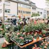 Kulturraum Garten - Neuwieder Gartenmarkt 2