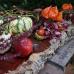Krefelder Herbstzauber 3