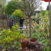 Frühlings-Gartenmarkt 3