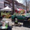 Northeimer Frühlingserwachen - Haus & Gartentrends 3