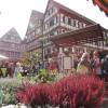Kürbismarkt Mosbach 1