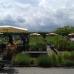 15. Steißlinger Gartentage 1