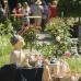 15. Steißlinger Gartentage 3