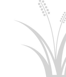 Entlebucher Kräuter- und Wildpflanzenmarkt