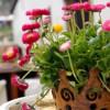 Akzente für Haus und Garten