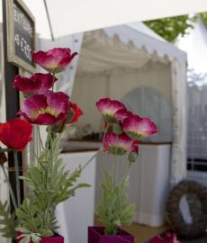Steißlinger Gartentage