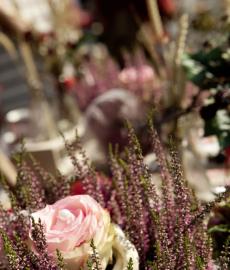 Blumen- und Gartenmarkt Frühlingsfest Herdecke