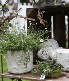 Lengericher Gartentage