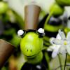 Grüne Lust – Markt für grüne Produkte und Ideen