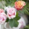 Blumen- und Gartenschau Altzella