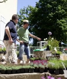Hennebergisches Gartenfest Kloster Veßra