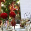 Regio Messe mit Gartenwelt