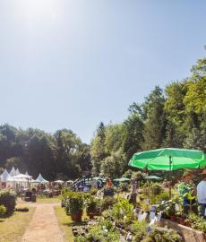 Gartenfestival Park & Schloss Branitz