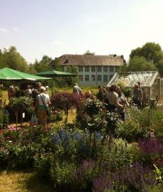 GartenLeben - Freilichtmuseum Dorenburg