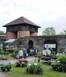 Gartenträume - Linslerhof
