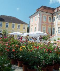Winterzauber auf Schloss Assumstadt