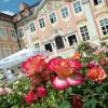 Schlossparkträume auf Schloss Assumstadt