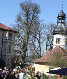 Christrosen & Ostermarkt auf Schloss Weingartsgreuth