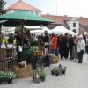 Niedersächsisches Gartenfestival