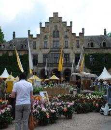 Ippenburger Sommerfestival 2016