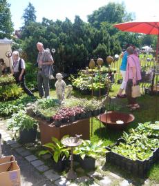 DiGa - Die Gartenmesse Tettnang