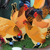 Ostern auf BaLi