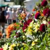 Traditionsfest mit grünem Markt
