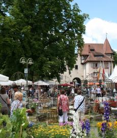 Veranstaltung: Verschoben auf 2021 – 17. DIGA Gartenmesse Schloss Beuggen