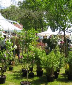 Veranstaltung: Abgesagt – Gartentage Schloss Oberg