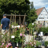 Pflanzenmarkt Wackershofen