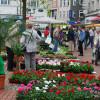 Blumen- und Gartenmarkt Essen Steele 2017