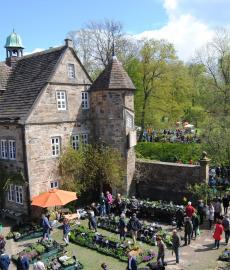 Pflanzentage Rittergut Remeringhausen