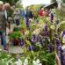 Traditionsfest mit grünem Markt 7