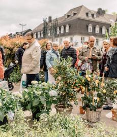 Kulturraum Garten - Neuwieder Gartenmarkt
